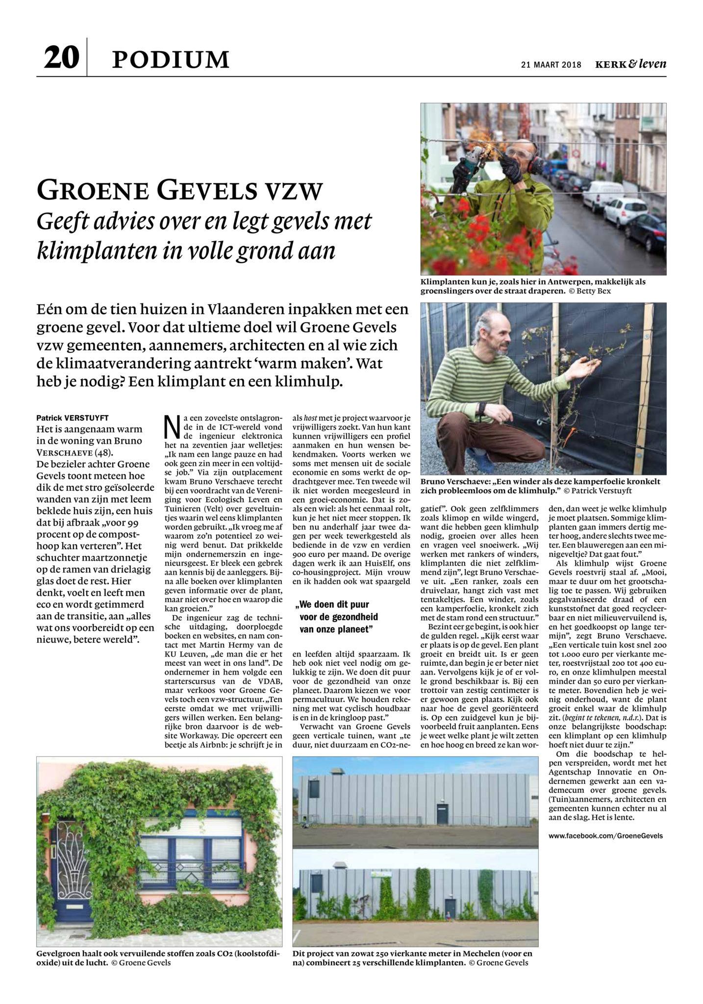 Artikel Visie - 11 mei 2013